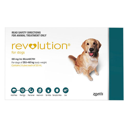 Revolution For Large Dogs 20.1 To 40Kg (Green)