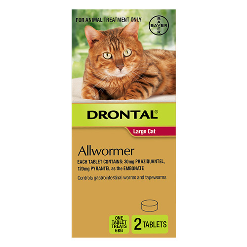 Drontal Wormers - Cats For Large Cats 6Kg
