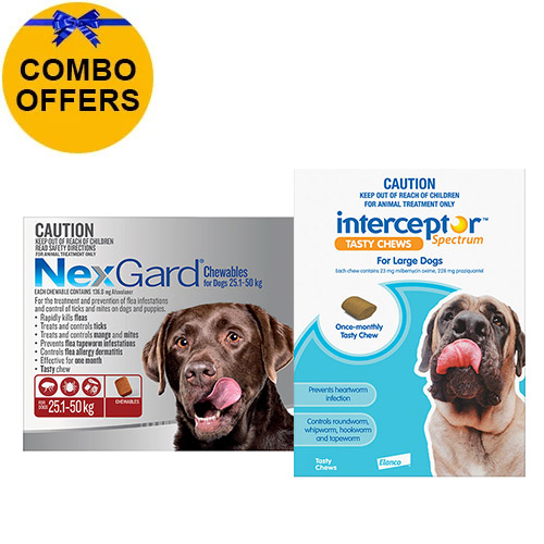 Nexgard + Interceptor Combo Pack For Dogs 22 To 45Kg-Nexgard (Red) + Interceptor (Blue)