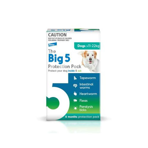 The Big 5 Protection Pack for Large Dogs (11-22 kg) Green