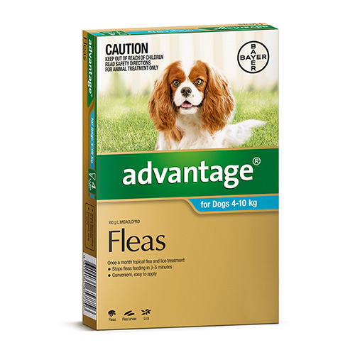 Advantage For Medium Dogs 4 To 10Kg (Aqua)