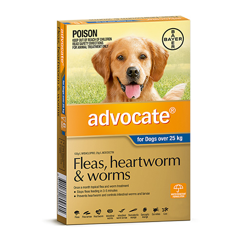 Advocate for Dogs For Extra Large Dogs Over 25 Kg (Blue)
