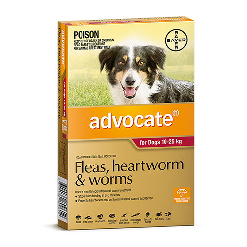 Advocate for Dogs For Large Dogs 10 to 25 Kg (Red)