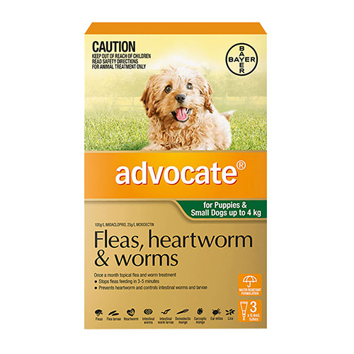 Advocate For Small Dogs/Pups up to 4Kg (Green)