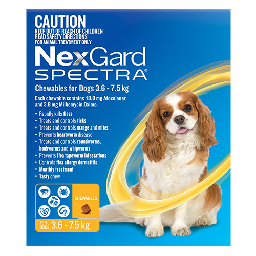 Nexgard Spectra Chewables Yellow for Small Dogs (3.6-7.5kg)