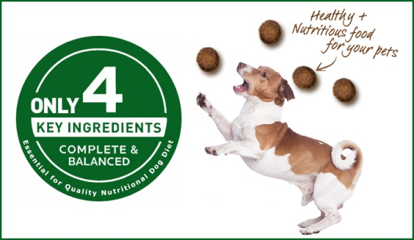 Balanced Nutritional Diet for Dogs?