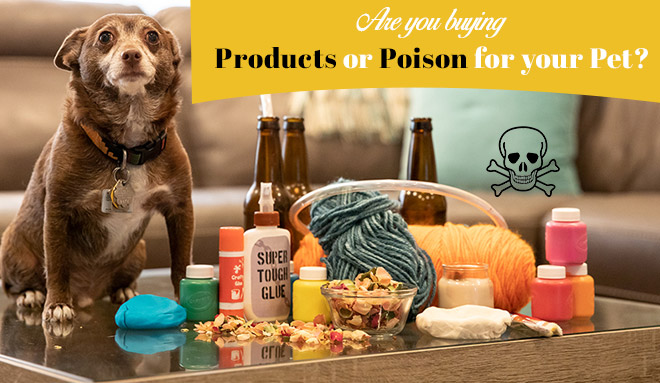 Are You Buying Products Or Poison For Your Pet?