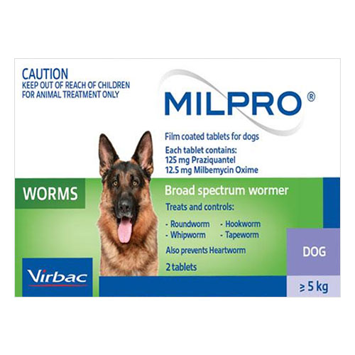 for Dogs (5 - 25 kg)
