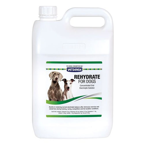 Vetsense Rehydrate for Dogs