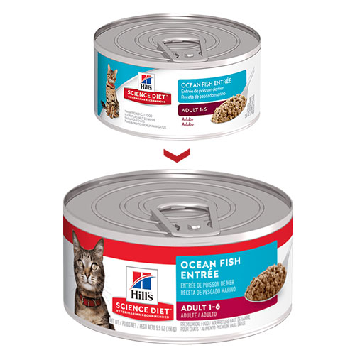 Hill's Science Diet Adult Ocean Fish Entree Canned Cat Food for Food