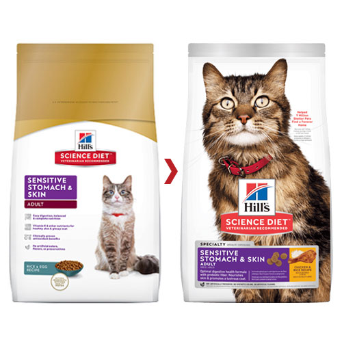 Hill's Science Diet Adult Sensitive Stomach & Skin Chicken & Rice Dry Cat Food for Food