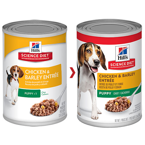 Hill's Science Diet Puppy Chicken & Barley Entrée Canned Dog Food for Food