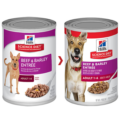 Hill's Science Diet Adult Beef and Barley Entrée Canned Dog Food for Food