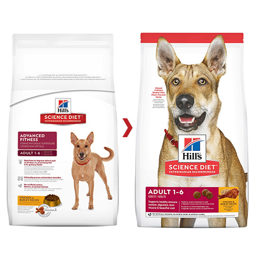 Hill's Science Diet Adult Chicken & Barley Dry Dog Food for Food