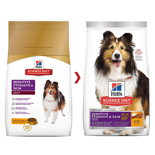 Hill's Science Diet Adult Sensitive Stomach & Skin Chicken Dry Dog Food for Food